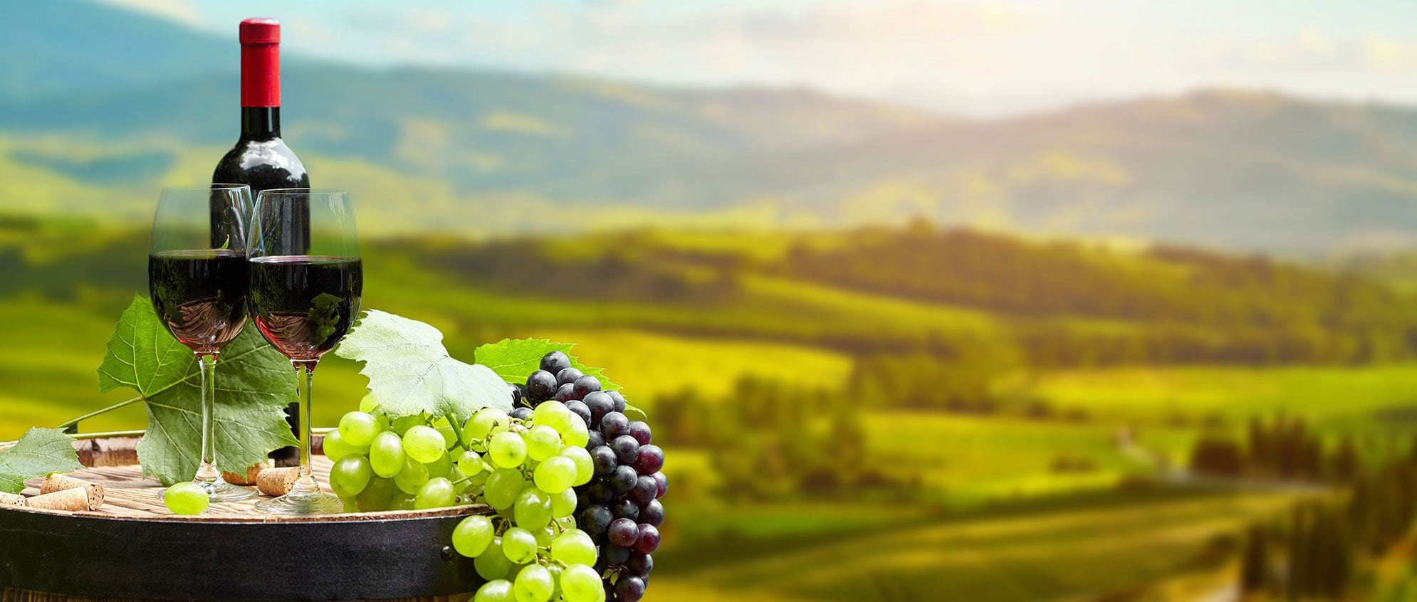 Geçmişten Günümüze: Şarap